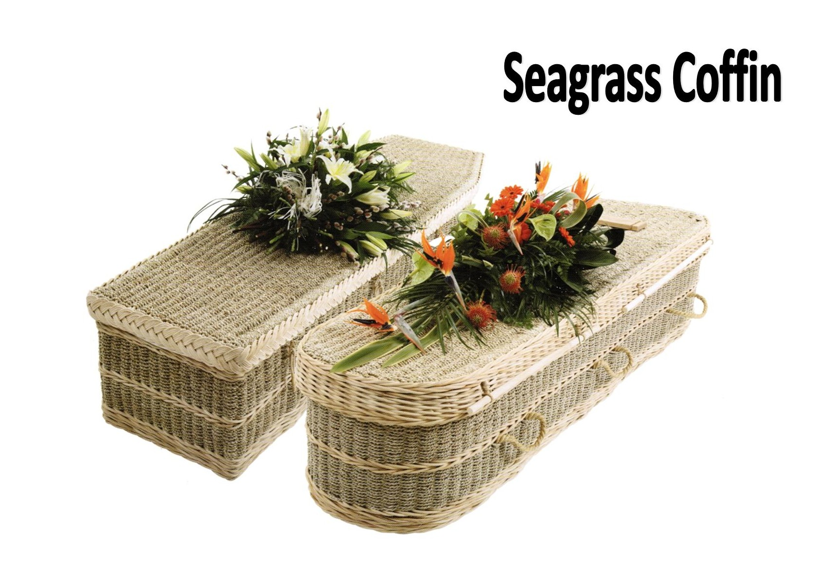 Cropped Seagrass Coffin