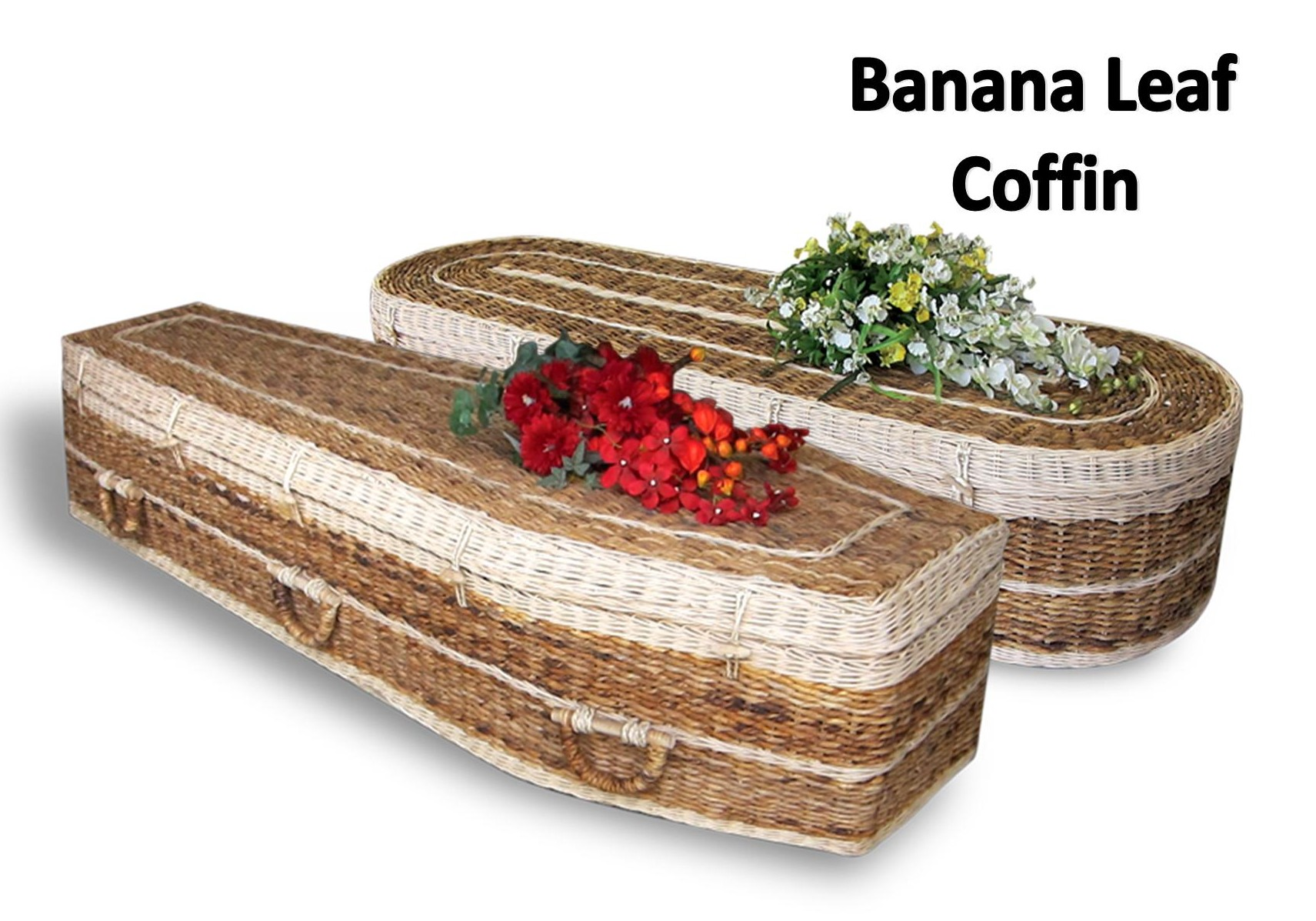 cropped Banana Leaf Coffin